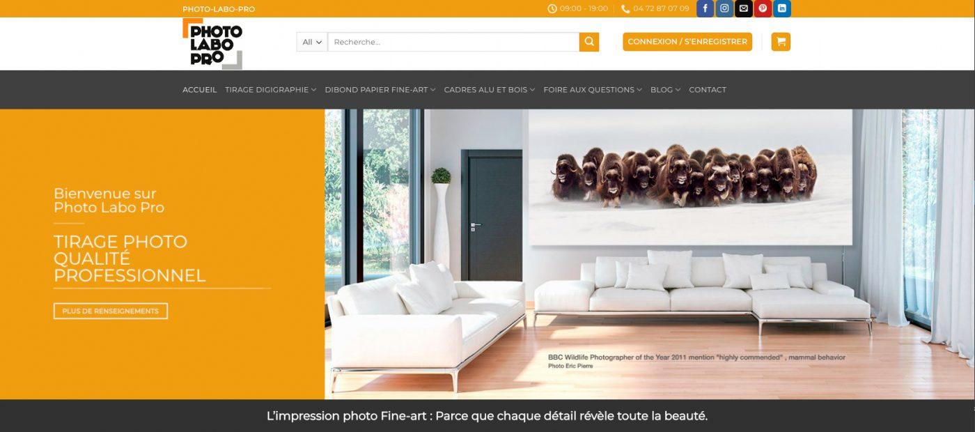 site-ecommerce-bellecom